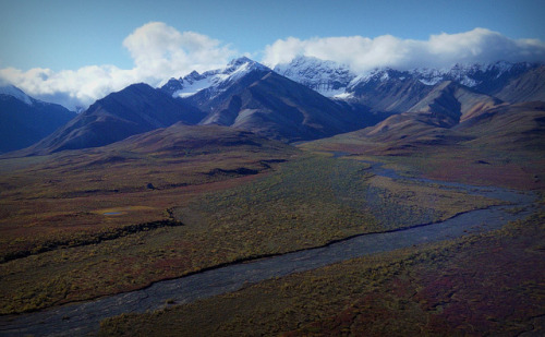 Land of Enchantment - Denali - Mountains - Alaska - Landscape by blmiers2 on Flickr. Outdoor Sporting Goods