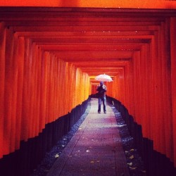 It was a little wet at the Fushimi Inari Shrine, but totally worth it!!! (at Fushimi Inari)