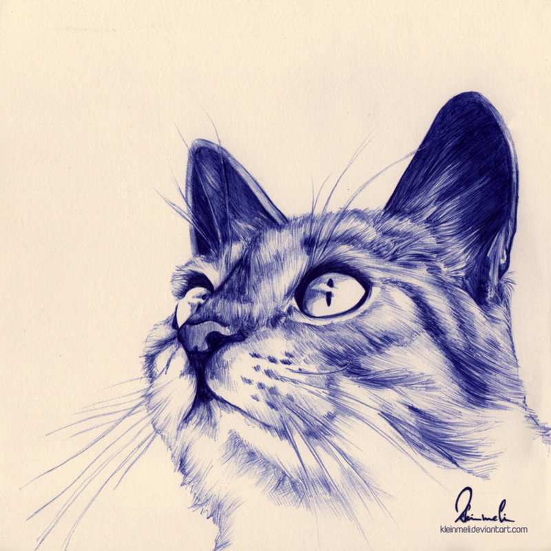 littlebunnysunshine:  Ballpoint Pen Kitty by =kleinmeli