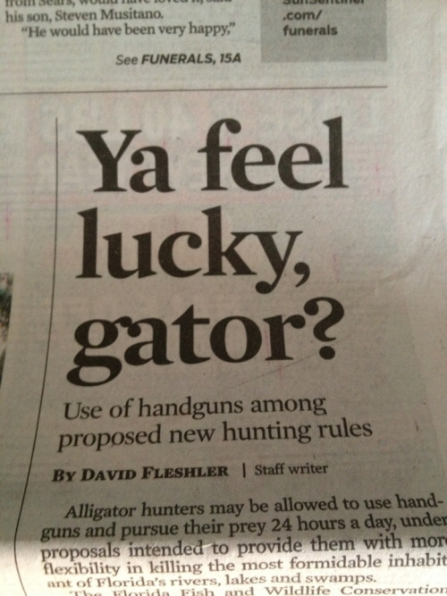 I'll miss you Florida, you lawless land of weirdos.
