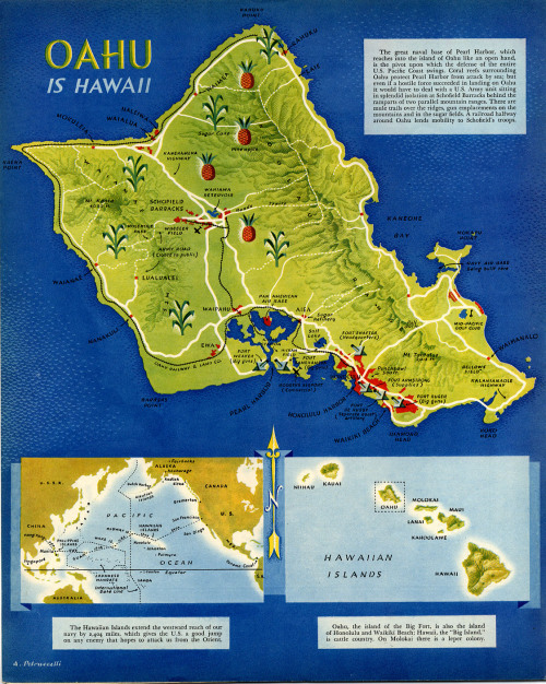 "Antonio Petruccelli - Oahu is Hawaii (1940) There's a lot of things I love about this map. 1. Oahu IS Hawaii, because it has forts and beaches. Those other islands are 'cattle country' and 'a leper colony', and can therefore be comfortably disregarded. 2. Look at the feathery way those mountains are drawn! They're quite pretty. 3. The matter-of-fact, casual treatment of Hawaii as being a resource for only two things: crops and military bases (notice the helpful labeling of 'sugar cane', 'pineapple', 'golf club', and 'big guns') 4. The ""hindsight is 20/20"" moment you get by reading the map talk up Pearl Harbor. The base is, evidently, well protected by attack… from sea."