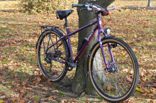 Surly Troll 650B (via Lovely Bicycle!)