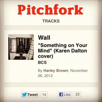 http://pitchfork.com/reviews/tracks/14604-something-on-your-mind-karen-dalton-cover/