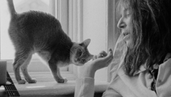 patti with a kitty,a still from dream of life