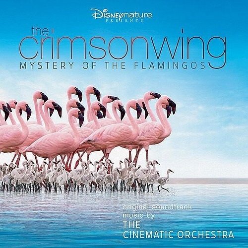 Arrival of the Birds - The Cinematic Orchestra
