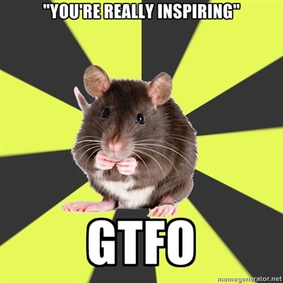 "survivorrat:  [Image description: Survivor rat meme. Text: ""You're really inspiring"" … GTFO]"