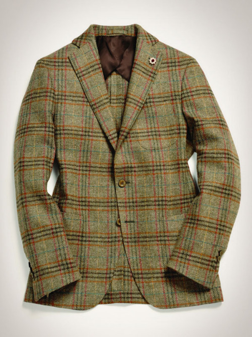 forno:  Lardini  Time For Tweed…