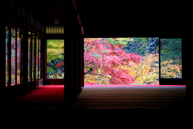 japanlove:  Autumn Garden by mrhayata on Flickr.