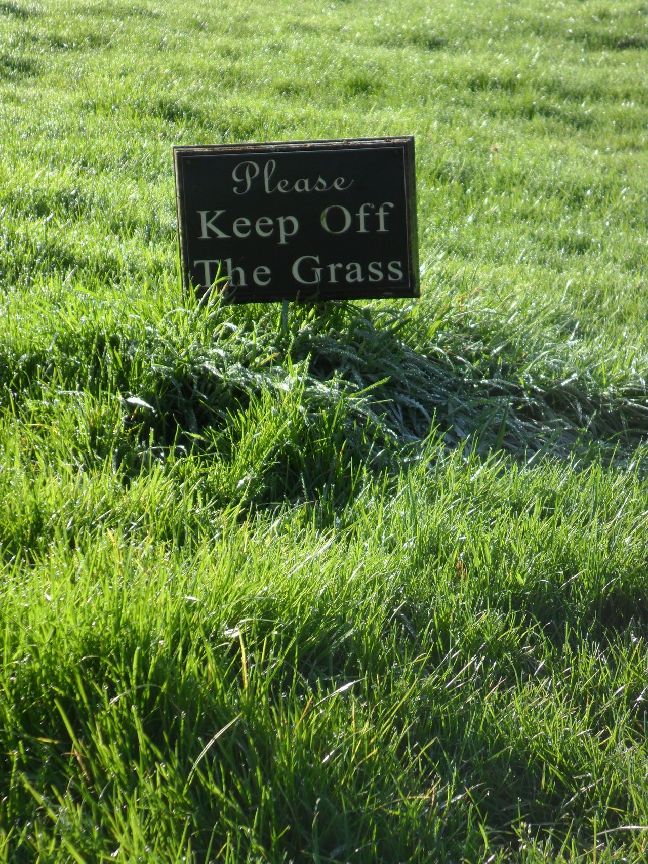 Please Keep off the Grass - *man* - Long Birch Farm, Brewood, Staffordshire
