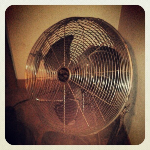 i was bored…so here's a picture of one of my biggest fans