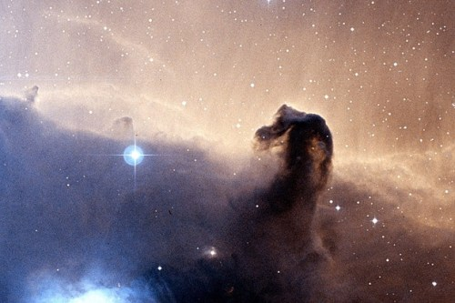 "sciencepopularis:   ikenbot: Horsehead Nebula Could Be Giant Petroleum Refinery Molecules discovered in the Horsehead Nebula hint that the region may function as a kind of gigantic, natural petroleum refinery. Observations made using the Institute for Millimetric Radio Astronomy's (IRAM) 30-metre telescope have detected the presence of hydrocarbon molecule C3H+ in the Horsehead Nebula, which sits around 1,300 to 1,500 light years from Earth in the constellation of Orion. Jérôme Pety and his team at the IRAM facility in the Spanish Sierra Nevada were surveying the nebula, a dense cloud of gases and dust, to discover more about its chemical content. Among the data they found unexpectedly high levels of the propynylidyne ion C3H+, which is one of the molecules that makes up oil and natural gas on Earth. ""We are seeing the operation of a natural refinery of petroleum on a giant scale,"" said Pety of the results. You can get an idea for just how giant the intergalactic hydrocarbon resource is thanks to astronomer Viviana Guzman, who adds that the nebula ""contains 200 times more hydrocarbons than the total amount of water on Earth"". The discovery of the molecule is evidence that a giant interstellar refinery exists within our galaxy, as C3H+ is created when polyaromatic hydrocarbons (commonly found in coal, tar and petroleum products) are broken down by radiation. In the case of the Horsehead Nebula, the nebula would provide the gas while nearby stars offer the required radiation."