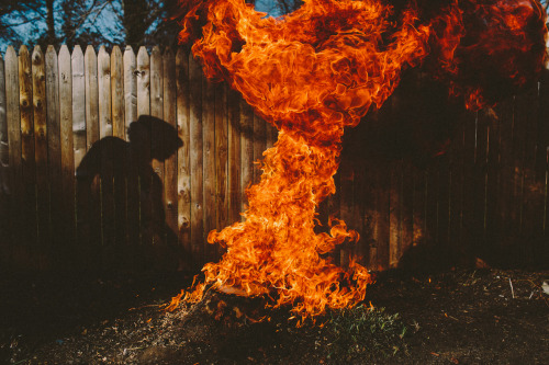 fuckyeahfluiddynamics:  The flames surrounding a burning tree stump flicker and billow in this image from photographer Serdar Ozturk. The chaotic motion of the flames is indicative of turbulence, a state of fluid flow known for its many scales. Note the range of lengthscales and structures in the fire. In turbulent flows, kinetic energy cascades from large scales, like the width of the top of the plume, down to the small scales, which may be even smaller than the wisps of flame at the edges of the fire. At the largest scales, the structures and behaviors we observe are all flow- and geometry-dependent, but theory predicts that, at the smallest scales, all turbulent flows look the same. (Photo credit: trashhand/Serdar Ozturk)