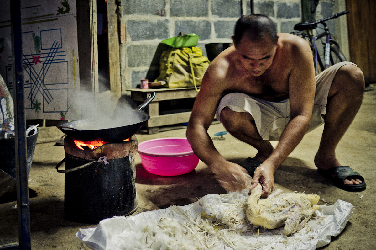 Plucking the duck for tonight's curry. Nong Bua, Thailand. หนองบัว