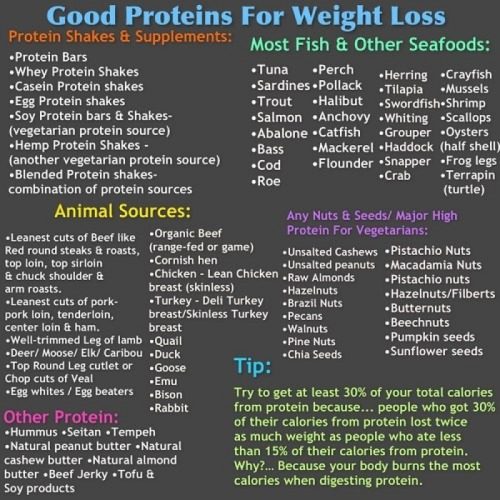 Get your #protein mDDers. Good Proteins for weight loss! #mdd #motivation #midailydiet (via miDailyDiet)