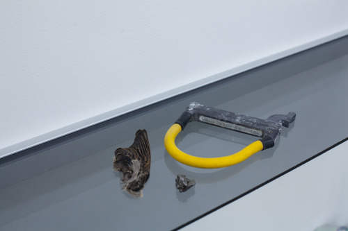 A found bird's wing, a meteorite, and an ejection seat pull handle.