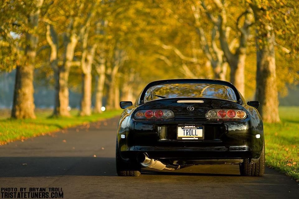 gillams:  I love supra's