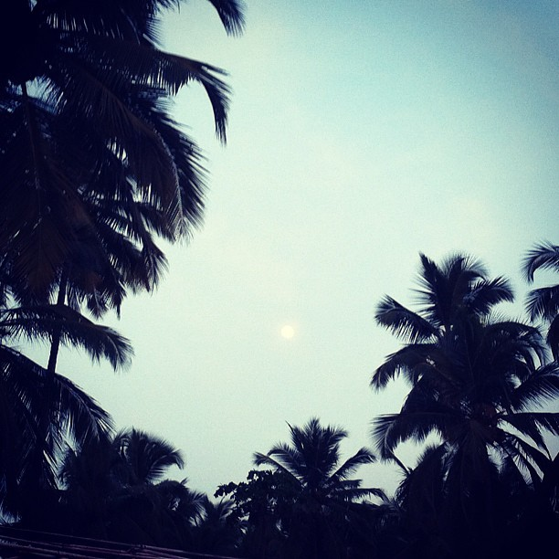 Full moon! #tropical #fullmoon #palmtrees #india #beach