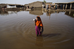 unicef:  PHOTO OF THE WEEK: 27 November 2012 A girl walks through flood waters, the third consecutive year in which millions have been displaced by massive flooding in Pakistan. The eighteenth United Nations Climate Change Conference, held 26 November to 7 December in Doha, Qatar, aims to achieve accelerated action to curb the increase in greenhouse gases that is threatening the planet. The destructive effects of climate change are felt most acutely by the poorest and will be inherited by all the world's children. ©UNICEF/Zaidi To see more: www.unicef.org/photography