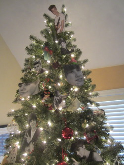 biblegurl:  mom left me in charge of decorating the tree