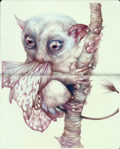 "marcomazzoni:  ""The Butterflies Eater"" 2012, colored pencils and ink on moleskine paper, cm 26x21"