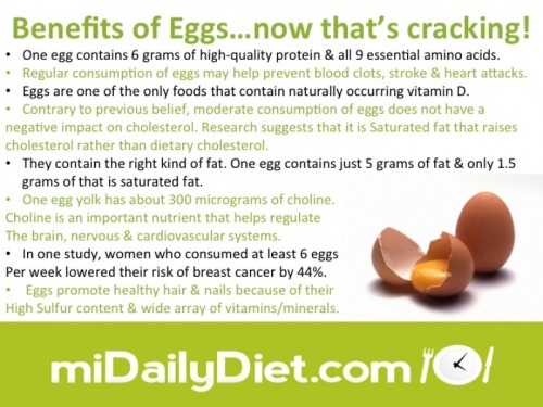 Some eggcellent Info here mDDers #mdd #motivation #motivation #protein (via miDailyDiet)