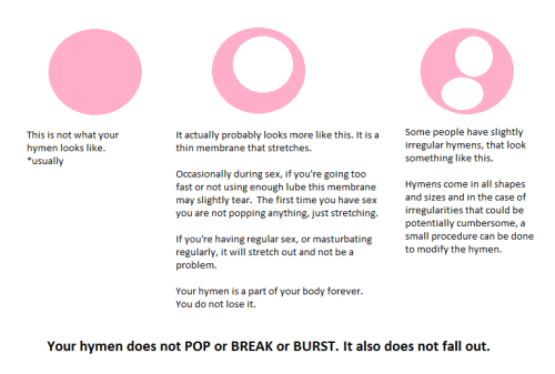 itscandidlycara:  A quick visual guide to the hymen.   fall out?! hate to be the person who thought that, haha, truly terrifying.