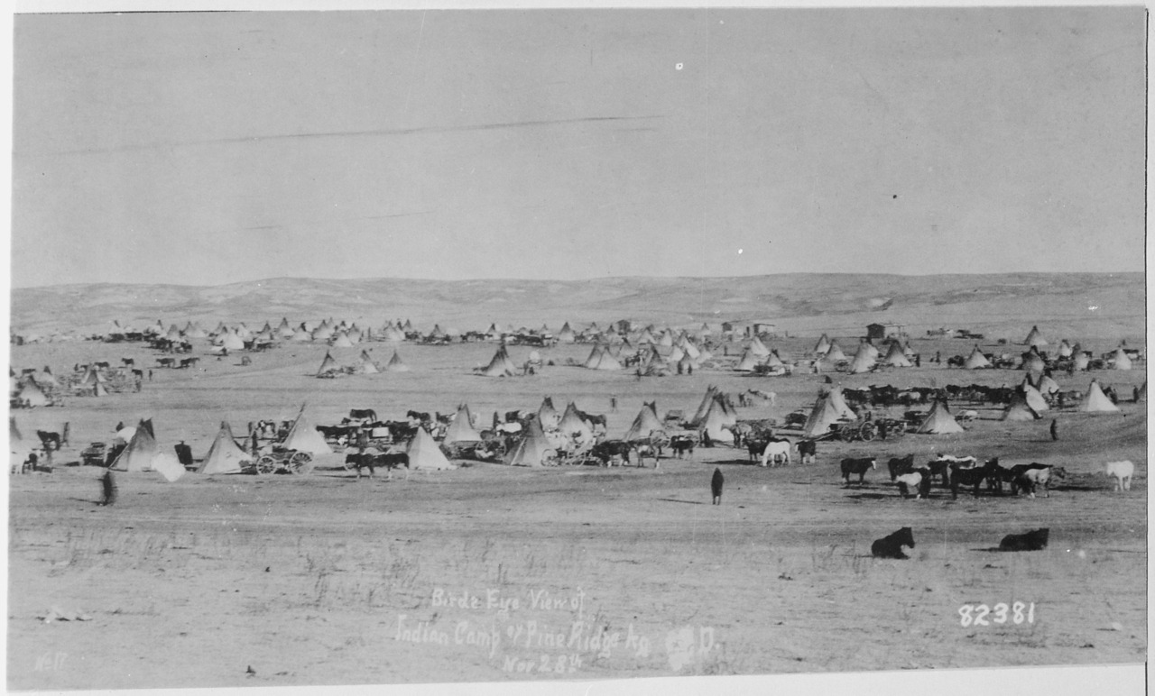 Bird's Eye View of Sioux Camp at Pine Ridge, South Dakota, 11/28/1890  A view of a camp at the Lakota Sioux Pine Ridge Reservation, just one month prior to the Wounded Knee Massacre. November is Native American Heritage Month.