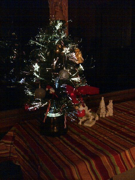 my tree this year :D