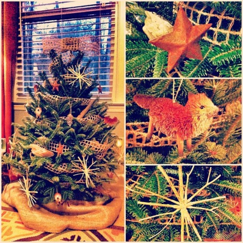I'm not a Scrooge after all. My first Christmas tree. #burlap #foxes #driftwood #twigs #pinecones #rustic #stars