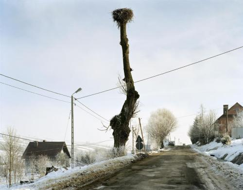 Mark Power Poland. Krzyzowka., Stork's Nest, December, 2004 chromogenic color print, 100 x 130 cm