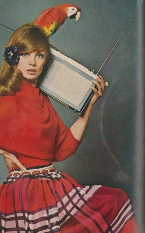 Jean Shrimpton, parrot and a portable radio.
