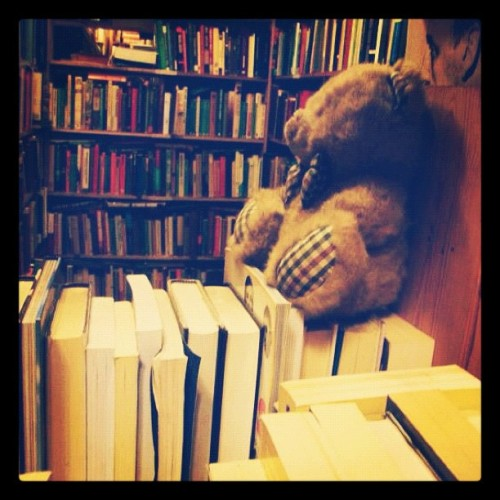 #bookshelfporn #books #library #bear #shop #cute #twee #quaint