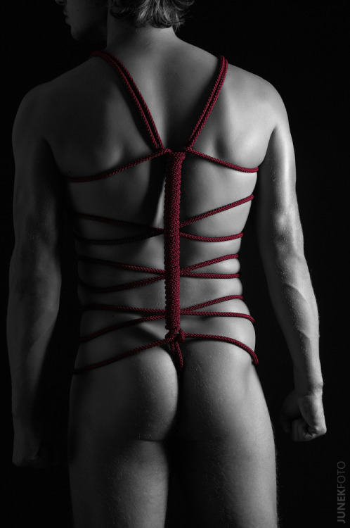 Velloso. . Maaan. The backs of my harnesses NEVER look like this. Front: awesome. Back: functional, but kiiind of a mess visually. *sigh* My shibari sucks. Poo. I really should practice more, but I just get distracted every single time.