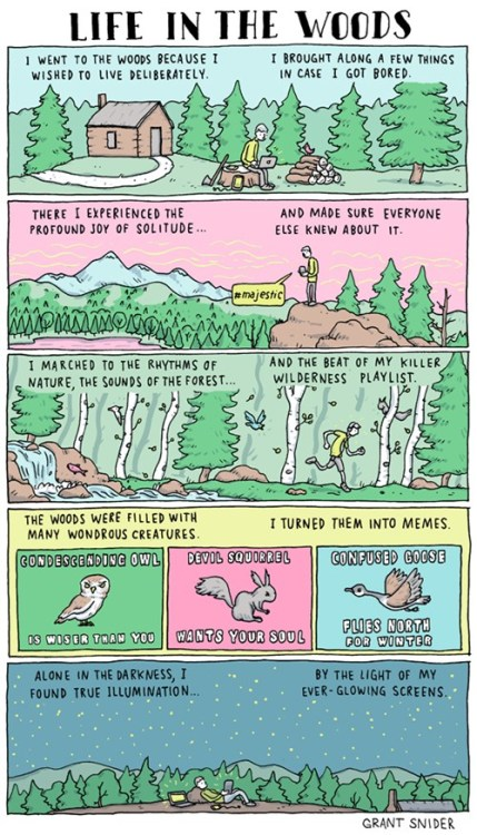 thedailywhat:  Webcomic of the Day: Life in the Woods  In the latest issue of Incidental Comics, Denver-based artist Grant Snider shares his humorous insight on the inescapable nature of the Internet.    I giggled, not even gonna lie.