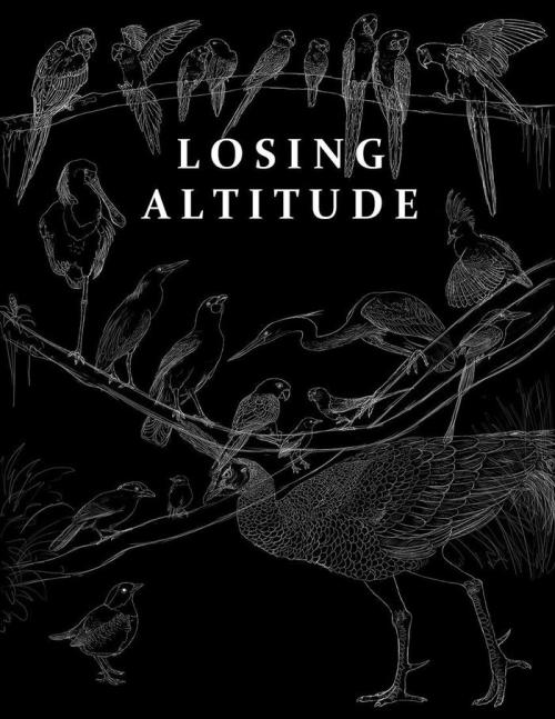 LOSING ALTITUDE: Raising Awareness Through Art Losing Altitude is a collaborative art book for the purpose of raising awareness of threatened and endangered bird species. It will feature art from over 40 artists from around the globe (one of which is me!!), bringing them together to illustrate threatened and endangered birds ranging from the little Fairy Pitta to the mighty Javan Hawk Eagle.  The finished art book will contain over 100 pages of lively full-color illustrations and photographs, from artists you may recognize such as Nambroth, Secondlina, Flying-Fox, Pallanoph, and more (click here for the full list)! And, if you help us to kickstart this project, you can be a part of it, too! To find out more about the project, and to help us to get this book off the ground, click here to visit the kickstarter site!