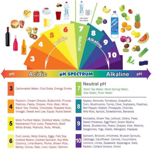 Foods we eat should be less acidic