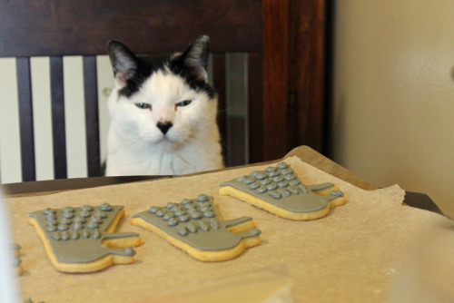 getoutoftherecat:  get out of there cat. you cannot defeat the cookie daleks by eating them. that task falls to one person and one person only. that's right, me.