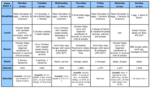 Week 3's Paleo Challenge summary at a glance (click photo to enlarge)  Week 1's Summary at a glance Week 2's Summary at a glance  In a sentence? Pretty much I've stopped half-assing trying to lose weight, and I'm actually just doing it.