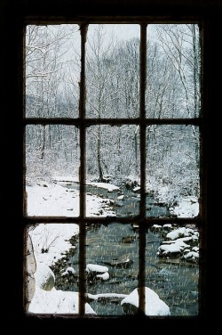 luthienthye:  (via Portals & Places / Looking Out The Barn Window)