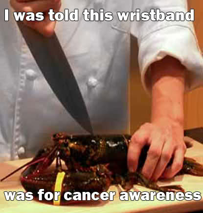 lobster misunderstands