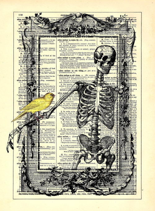 Skeleton In Frame With Bird by Stay Gold Media