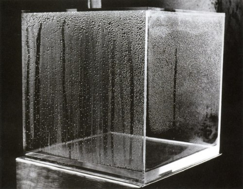 juju-be-art:  Hans Haacke,Condensation Cube,1963-1965.