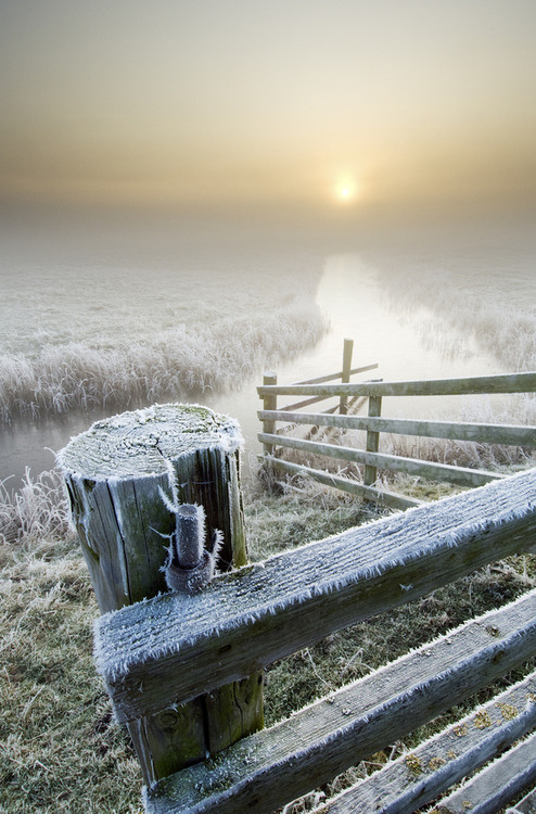 Frosty Sunrise, Isle of Sheppey, England photo via aberrantbeauty