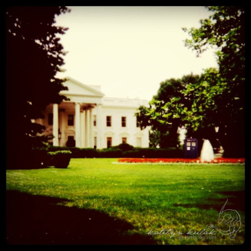 The White House: Washington D.C., District of Columbia, United States