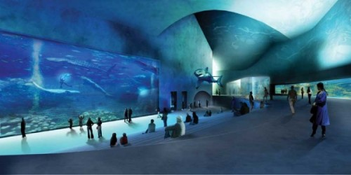 A survey of awesome aquarium architecture