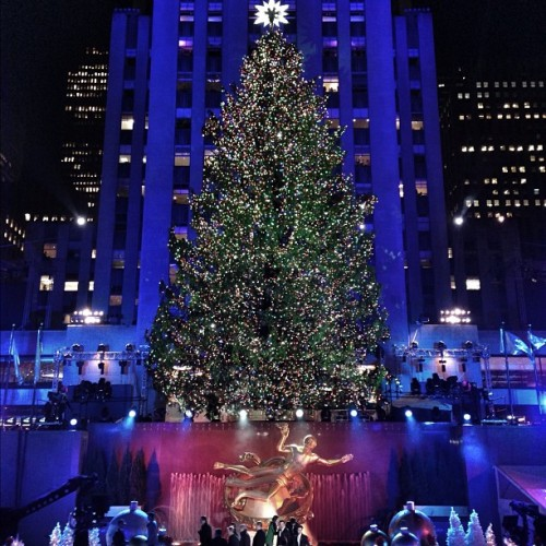 Introducing this year's Rockefeller Center Christmas Tree. #NYC #NBCNews #Christmas #ChristmasTree #RockefellerTree (at 30 Rockefeller Plaza)