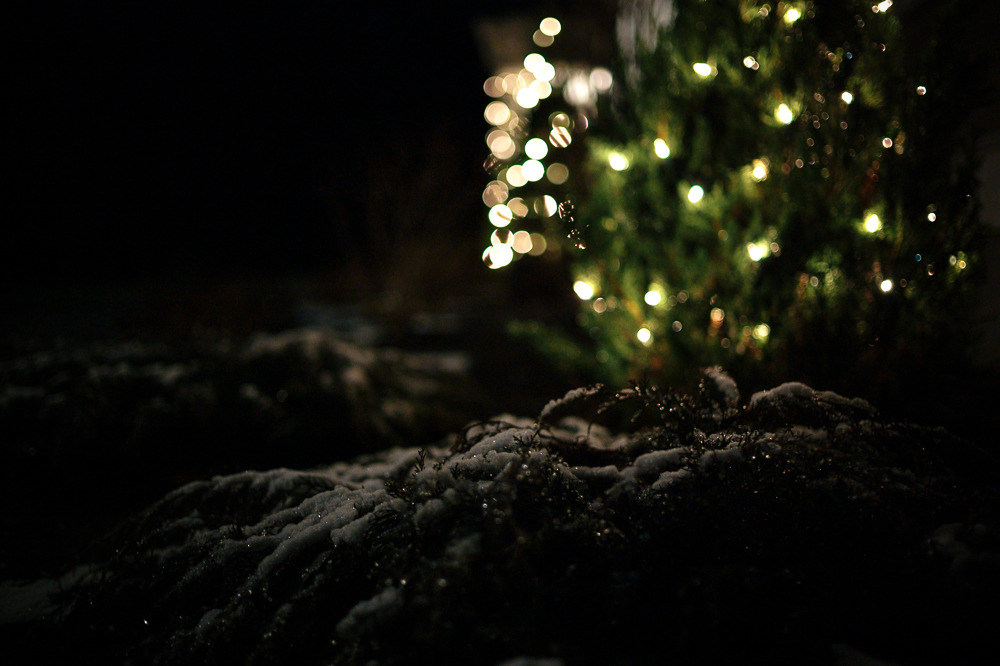 We got our first snow this week   (Leica M9 | ISO 1250, 35mm, f/1.4, 1/30sec)