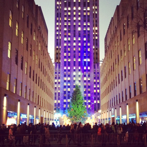 Last night, before the Rockefeller Center Christmas Tree was lit for the season.