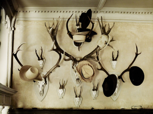 In love with this hat rack Reblog love to tweedsandtales:  rusticmeetsvintage:  Andrew Montgomery Photography- country interiors
