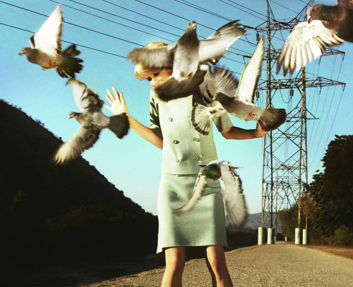 Part of The Big Valley Photo Series by Alex Prager.